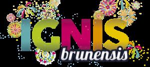 IGNIS BRUNENSIS 2021 @ hrad Špilberk | Jihomoravský kraj | Česko